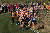 Missouri senior Ollie Lockley runs in 3rd-place at the 6150-meter mark in the Men's 10k at the NCAA Division I Cross Country Midwest Regional in Iowa City, Ia. Friday November 11, 2016. Lockley would fade late in the race, taking a 37th respectively in the field of 194 runners, clocking in at 31:05. The Mizzou men's team finished 10th out of 33 complete teams.