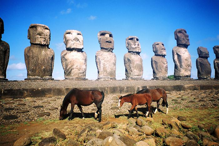 Cimarrones / Caballos salvajes y Moais en Isla de Pascua, Chile.<br /> <br /> Cimarrones / Moais and wild horses in Easter Island, Chile.