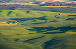 Whitman County, WA<br /> Evening light on the farms and rolling green hills of the Palouse in eastern Washington, from Steptoe Butte State Park
