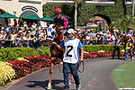 DEL MAR, CA  AUGUST 4:  #2 Luck's Royal Flush, ridden by Gary Stevens, in the paddock before the Graduation Stakes  August 4, 2018 at Del Mar Thoroughbred Club in Del Mar, CA.  (Photo by Casey Phillips/Eclipse Sportswire/ Getty Images)