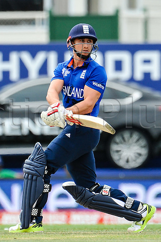 23.02.2015. Christchurch, New Zealand. James Taylor of England during the ICC Cricket World Cup match between England and Scotland at Hagley Oval in Christchurch, New Zealand. Monday 23 February 2015.