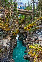 Athabasca  River at Athabasca Falls. Canadian Rocky Mountains<br />