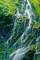 Proxy Falls, Cascade Range, Oregon