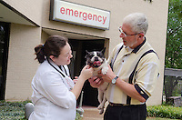 Owner Rocky Sullivan holding patient Mitsy, while conversing with intern, Dr. Katherine Gerken.