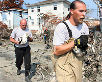 Brett Huff and Tim Rickey, of the Humane Society of Missouri, carry a mother and her kitten to safety after they found them underneath a home in New Orleans three weeks after Hurricane Katrina destroyed the city. Center is Private Dustin Leetch who accompanied the men as they went door to door dearching for surviving animals.