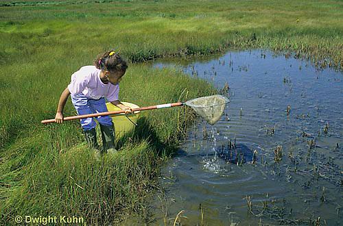 AC35-007z  Girl collecting specimens at salt marsh