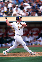 OAKLAND, CA - Jason Giambi of the Oakland Athletics bats during a game at the Oakland Coliseum in Oakland, California in 2000. Photo by Brad Mangin