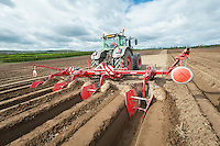 Using a Grimme bedforma for carrots - Nottinghamshire, April