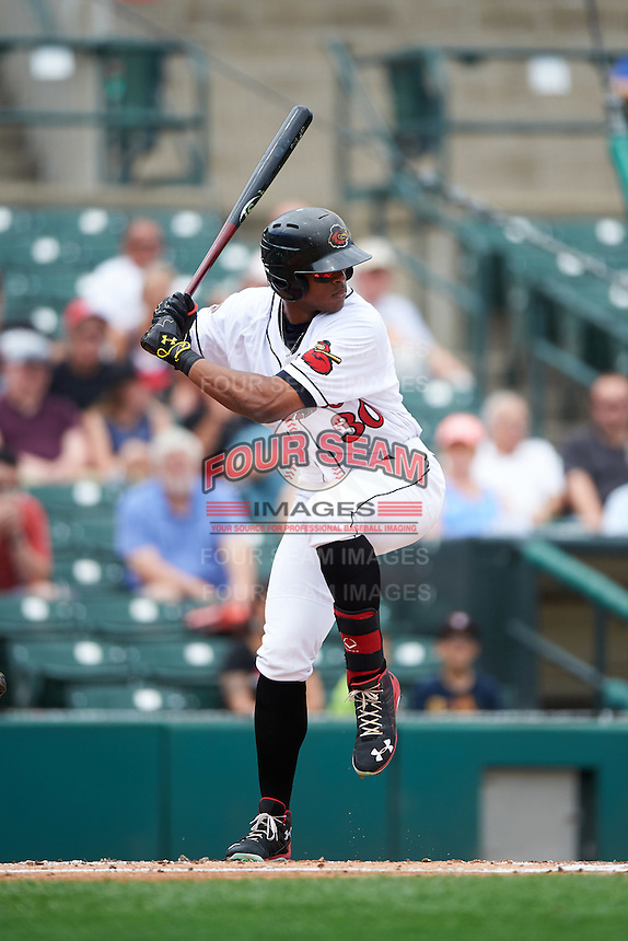 Rochester Red Wings left fielder Adam Walker (30) at bat during a game against the Columbus Clippers on June 16, 2016 at Frontier Field in Rochester, New York.  Rochester defeated Columbus 6-2.  (Mike Janes/Four Seam Images)