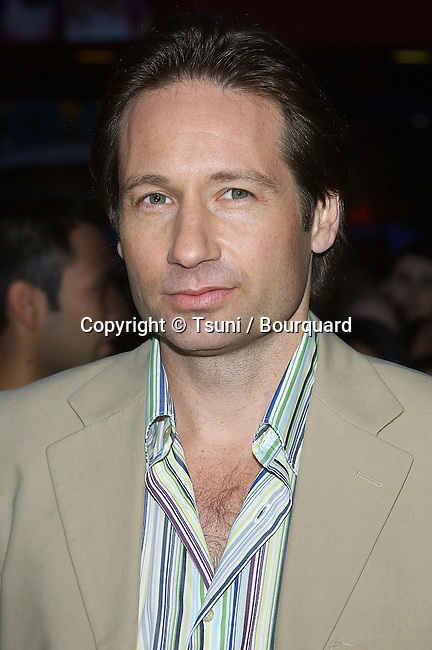David Duchovny arriving at the Connie and Carla Premiere at the universal Studio Theatre in Los Angeles. April 13, 2004.