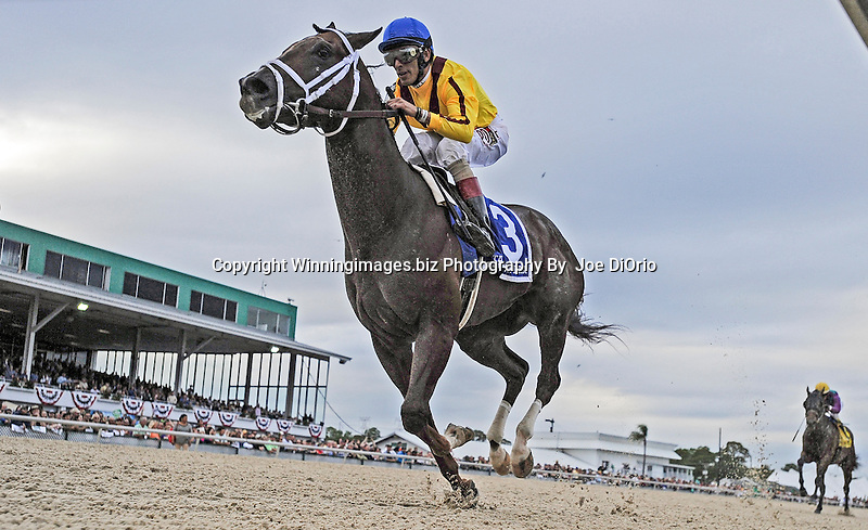 Carpe Diem with Johnny Velazquez Wins The Tampa Derby at Tampa Bay Downs  March 7 2015