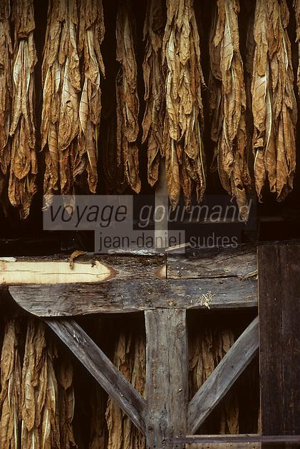 Europe/France/Midi-Pyrénées/46/Lot/Vallée du Célé/Saint-Sulpice: Grange à tabac