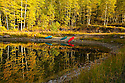 The reflections of the fall aspens and the colorful canoes in the perfectly still water show beauty to the beholder.