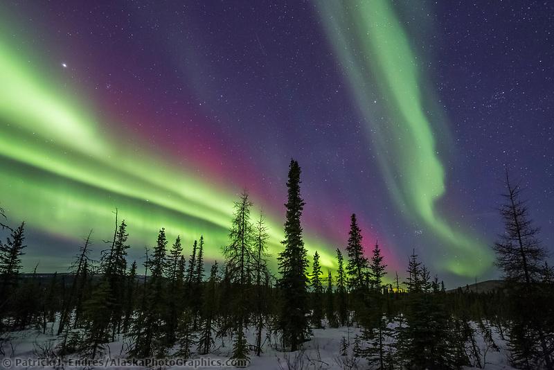 Northern lights over Goldstream Valley in Fairbanks, Alaska.