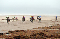 31-8-2014: Danny Sheehy steers 'One of the Boys' to victory on the beach at the Glenbeigh Races on Rossbeigh Strand in County Kerry on Sunday.<br /> Picture by Don MacMonagle