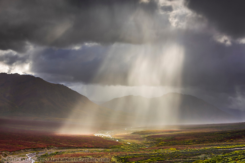 Rain squall over the Plains of Murie, Denali National Park, Interior, Alaska.