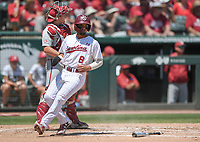 NWA Democrat-Gazette/CHARLIE KAIJO South Carolina outfielder Carlos Cortes (8) scores during the second game of the NCAA super regional baseball, Sunday, June 10, 2018 at Baum Stadium in Fayetteville. Arkansas fell to South Carolina 5-8.