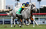 January 25, 2020: Jean Elizabeth #5 with jockey Irad Ortiz Jr. wins the Ladies' Turf Sprint Black Type Stakes during the Pegasus World Cup Invitational at Gulfstream Park Race Track in Hallandale Beach, Florida. Liz Lamont/Eclipse Sportswire/CSM