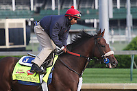 May 1, 2014: Wicked Strong gallops in preparation for the Kentucky Derby at Churchill Downs in Louisville, KY. Zoe Metz/ESW/CSM