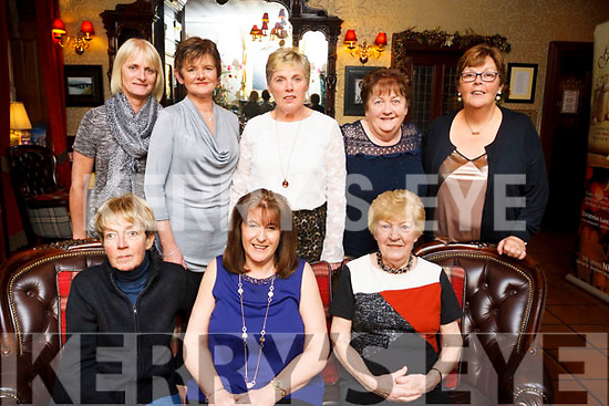 Friends enjoying the festive atmosphere in the Grand Hotel, Tralee.<br /> Seated, Cathy Mc Donnelly, Linda Ahern &amp; Mary Slattery. Standing: Pauline Fitzmaurice, Trish Casey, Kathleen Dillane, Pat Boyle and Patricia Cleary.