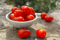 Fresh picked plum tomatoes