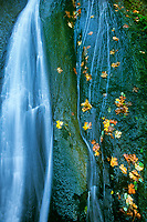738600015 autumn colored leaves decorate the rock fall shaping wachlella falls in the columbia river gorge national scenic area in northern oregon
