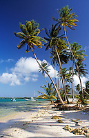 Trinidad & Tobago, Commonwealth, Tobago, Pigeon Point: little beach aside from the famous one