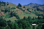 Hills and peaks in the King Range, rural Humboldt County, California