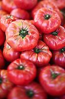 Europe/France/Provence-Alpes-Côte d'Azur/13/Bouches-du-Rhône/Arles: Tomates  sur le marché