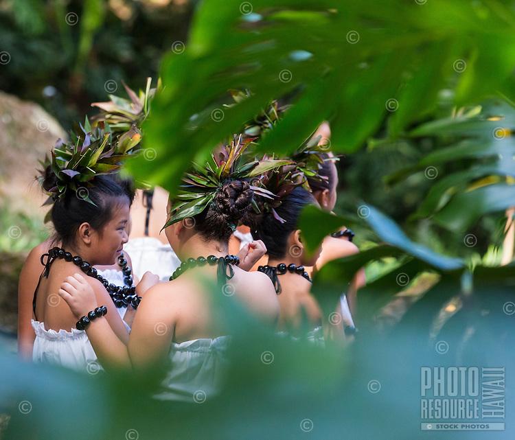 Young hula dancers at a recital in Waimea Valley, O'ahu
