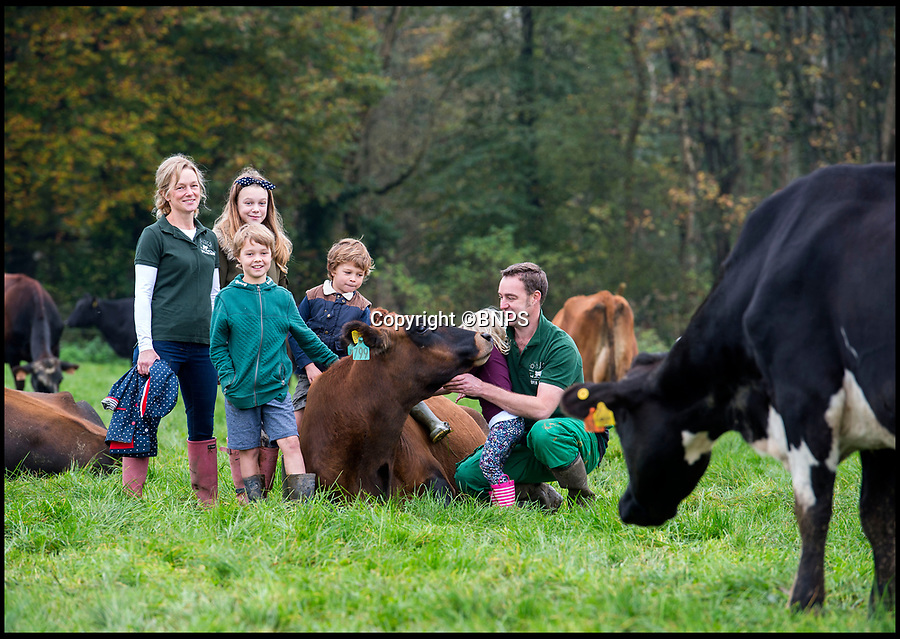 BNPS.co.uk (01202 558833)<br /> Pic: PhilYeomans/BNPS<br /> <br /> Farmer Tom Foot with wife Kelly and kids Neve, James, Beau and Ivy.<br /> <br /> The farm where the cows never come home - Milk maestro Tom Foot has come up with a unique free range system on his farm in the heart of Dorset.<br /> <br /> His 900 cows stay out in the fresh air day and night whatever the weather - and he takes his homemade milking parlour out to them each day.<br /> <br /> Open Air Dairy is the only large scale dairy farm in Europe using the unusual method, which goes entirely against modern farming wisdom where many herds are kept in year round.<br /> <br /> The bold moo-ve is reaping rewards for the family run business that doesn't need to spend a fortune on expensive farm building's and a fixed milking parlour. <br /> <br /> Farmers as far afield as Germany and Zimbabwe have now got in touch to ask Tom to manufacture moo-vable milk parlours for them.<br /> <br /> Tom's wife Kelly now helps out with their own brand of 'Open Air' cheddar, made 100 per cent from the milk of their al fresco cows.
