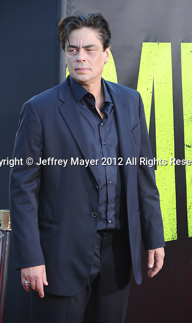 WESTWOOD, CA - JUNE 25: Benicio Del Toro arrive at the Los Angeles premiere of 'Savages' at Mann Village Theatre on June 25, 2012 in Westwood, California.