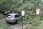 Despite the warning signs, this driver has no choice after a storm in New York bought down tree's and power-lines.