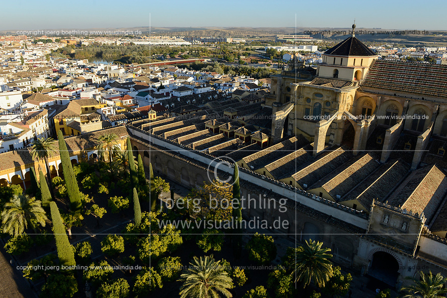 SPAIN, Cordoba, Mezquita, mosque and cathedral, court garden with palm and orange trees