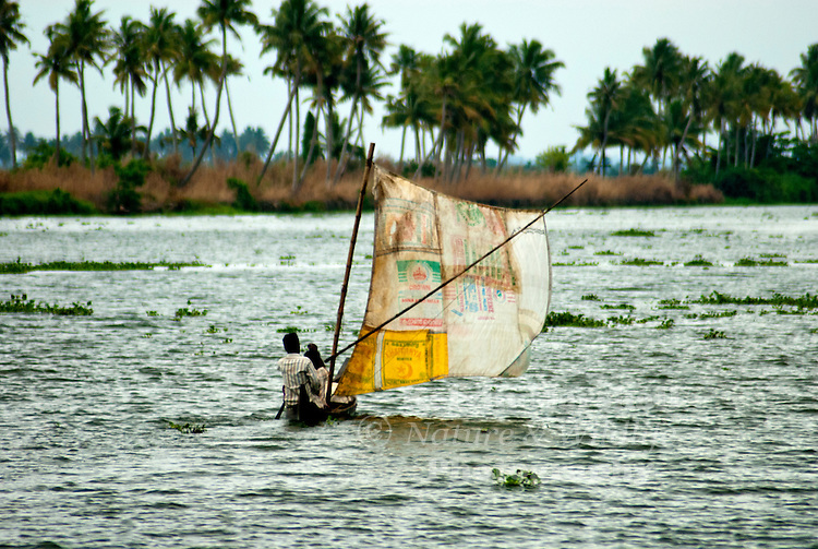 "A couple set sail on the lake with their canoe. Alleppey Kerala ""Backwaters""- Southern India."