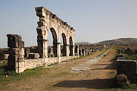 Section of the Portico leading to the shops on the main street or Decumanus Maximus, looking North East towards the Tingis Gate in the distance, Volubilis, Northern Morocco. Volubilis was founded in the 3rd century BC by the Phoenicians and was a Roman settlement from the 1st century AD. Volubilis was a thriving Roman olive growing town until 280 AD and was settled until the 11th century. The buildings were largely destroyed by an earthquake in the 18th century and have since been excavated and partly restored. Volubilis was listed as a UNESCO World Heritage Site in 1997. Picture by Manuel Cohen
