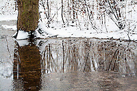 Forest and Water after Fresh Snowfall - Dry Brush Effect