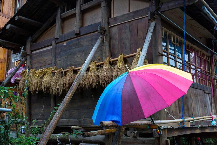 Zhaoxing, Guizhou, China, a Dong Minority Village.  Umbrella and Rice Drying outside a House.