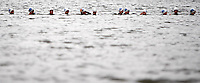 Photo: Richard Lane/Richard Lane Photography. British Triathlon Super Series, Parc Bryn Bach. 18/07/2009. .Swimming start during the Women's Elite Race transition area.