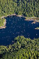 Aerial of lake and Sitka spruce trees on Revillagigedo Island, southeast, Alaska.