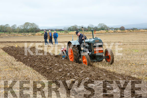 Aeneas Horan at the Abbeydorney Ploughing Match on Sunday