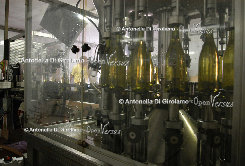 Azienda Agricola Casale Marchese è una azienda in una delle zone più tipiche della produzione del vino Frascati D.O.C. Situata nell'area dei Castelli Romani..The Casale Marchese company lies in Roman Hills. The most typical area for the wine production Frascati D.O.C..Produzione e imbottigliamento del vino. Production and bottling of wine. ...