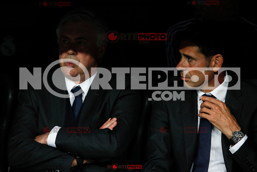 Real Madrid´s coach Carlo Ancelotti and second coach Fernando Hierro during the Champions League semi final soccer match between Real Madrid and Juventus at Santiago Bernabeu stadium in Madrid, Spain. May 13, 2015. (ALTERPHOTOS/Victor Blanco) /NortePhoto.COM