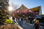 1704-06 GCS Spring 0005<br /> <br /> 1704-06 GCS Spring<br /> <br /> April 5, 2017<br /> <br /> Photography by Nate Edwards/BYU<br /> <br /> &copy; BYU PHOTO 2016<br /> All Rights Reserved<br /> photo@byu.edu  (801)422-7322