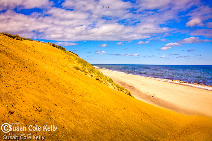 White Crest Beach in Wellfleet, Cape Cod, MA