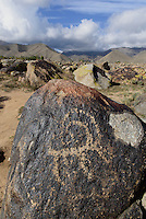 Steinfeld mit Steinritzungen, 2.Jt. v.Chr. n&ouml;rdlich des  Issyk Kul See, Kirgistan, Asien<br /> stone field with engraved stones 2nd Mill. b.C. north of Issyk Kul Lake, Kirgistan, Asia
