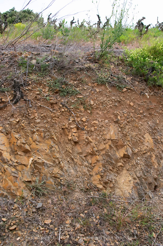 Section through the schist slate with clay soil. Mas Amiel, Maury, Roussillon, France