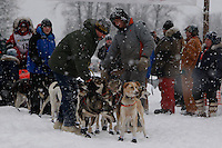 Handlers hold Meredith Mapes dogs before she leaves the start line of the 2009 Junior Iditarod on Knik Lake on Saturday Februrary 28, 2009.