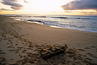 Small ceremonial canoe on beach, Kahoolawe