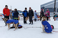 Race fans watch Bob Bundtzen 's dogs in Nome on Friday March 14 during the 2014 Iditarod Sled Dog Race.<br /> <br /> PHOTO (c) BY JEFF SCHULTZ/IditarodPhotos.com -- REPRODUCTION PROHIBITED WITHOUT PERMISSION